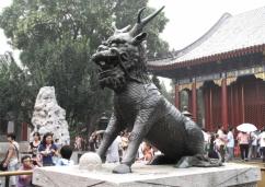 Čína 73