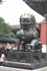 Čína 74