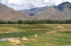 Tibet 100